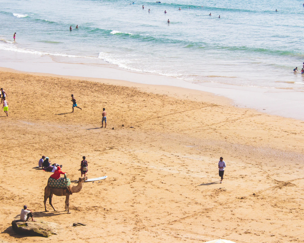 Taghazout surf
