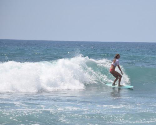 Coconut surf point