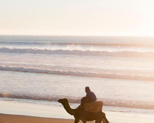 Surf in Agadir thumb