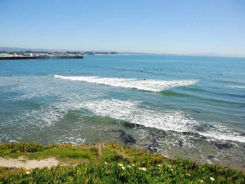 Santa Cruz surf spot